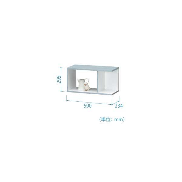COB-3060BW 型図